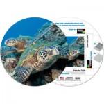 Pigment-and-Hue-RHONU-41224 Puzzle Rond déjà assemblé - Grande tortue de mer