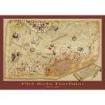 Puzzle  Art-Puzzle-4308 La Carte de Piri Reis