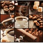 Puzzle  Grafika-00802 Collage Café