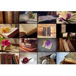 Puzzle  Grafika-01403 Collage - Livres