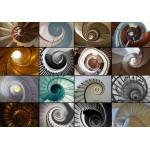 Puzzle  Grafika-01404 Collage - Escalier