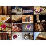 Puzzle  Grafika-01476 Collage - Livres
