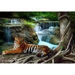Puzzle  Grafika-01559 Tigre