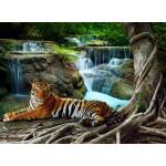 Puzzle  Grafika-01560 Tigre
