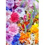 Puzzle  Grafika-01640 Explosion de Fleurs