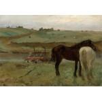 Puzzle  Grafika-01769 Edgar Degas : Chevaux dans un Pré, 1871