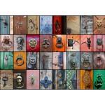 Puzzle  Grafika-T-00042 Collage - Portes