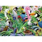 Puzzle  King-Puzzle-05483 Magic Birds
