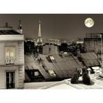 Puzzle  Nathan-87106 Sur les Toits de Paris