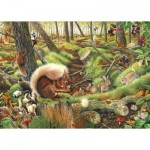 Puzzle  The-House-of-Puzzles-3688 Save Our Squirrels