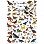 Puzzle  Master-Pieces-71971 Butterflies of North America