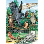 Puzzle  Cobble-Hill-58810 North American Owls