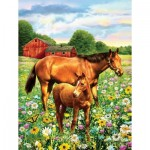 Puzzle  Sunsout-37174 Pièces XXL - Mare and Foal