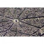 Puzzle  Piatnik-5376 Collection Skyview : Paris, vue du ciel
