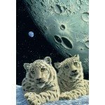 Puzzle  Grafika-Kids-01666 Schim Schimmel - Lair of the Snow Leopard