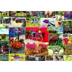 Puzzle  Grafika-Kids-02107 Collage - Vélos