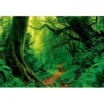 Puzzle  Educa-17098 Enchanted Forest