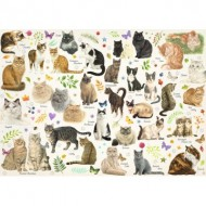 Puzzle  Jumbo-18595 Poster de Chats