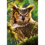 Puzzle  Castorland-103577 Watching & Waiting - Hibou