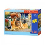 Puzzle  Castorland-13340 Gathering Friends