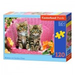 Puzzle  Castorland-13357 Chatons