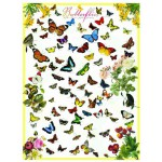 Puzzle  Eurographics-6000-0077 Papillons