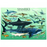 Puzzle  Eurographics-6000-0079 Requins
