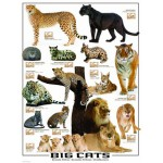 Puzzle  Eurographics-6000-0125 Grands chats