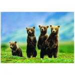 Puzzle  Eurographics-6000-0531 Oursons debout