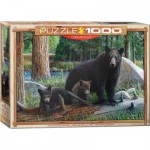 Puzzle  Eurographics-6000-0793 New Discoveries