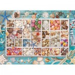 Puzzle  Eurographics-6000-5529 Collection de Coquillages