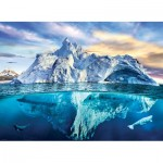 Puzzle  Eurographics-6000-5539 Save our Panet Collection - Arctique