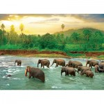 Puzzle  Eurographics-6000-5540 Save our Planet Collection - Forêt Tropicale
