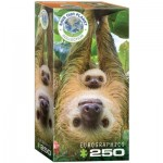 Puzzle  Eurographics-8251-5556 Save the Planet - Sloth