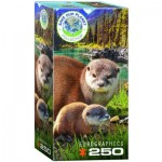 Puzzle  Eurographics-8251-5558 Save the Planet - Otters