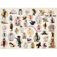 Eurographics-8300-0992 Pièces XXL - Familiy Puzzle: Yoga Puppies