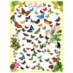 Puzzle  Eurographics-8500-0077 Papillons