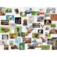 Puzzle  Ravensburger-16711 Funny Animals Collage