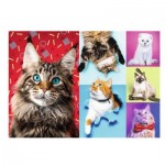 Puzzle  Trefl-10591 Happy Cats