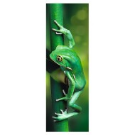 Puzzle  Trefl-75007 Little Frog