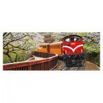 Pintoo-H1483 Puzzle en Plastique - Forest Train in Alishan National Park