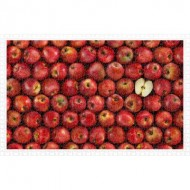Pintoo-H2006 Puzzle en Plastique - Fruits - Apple