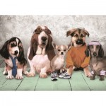 Puzzle  Art-Puzzle-4513 The Model Dogs