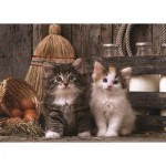 Puzzle  Art-Puzzle-4515 Chatons