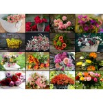 Puzzle  Grafika-02478 Collage - Fleurs