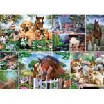 Puzzle  King-Puzzle-55871 Collage - Animal World