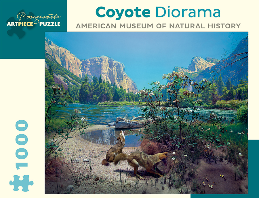 coyote-diorama-american-museum-of-natural-history