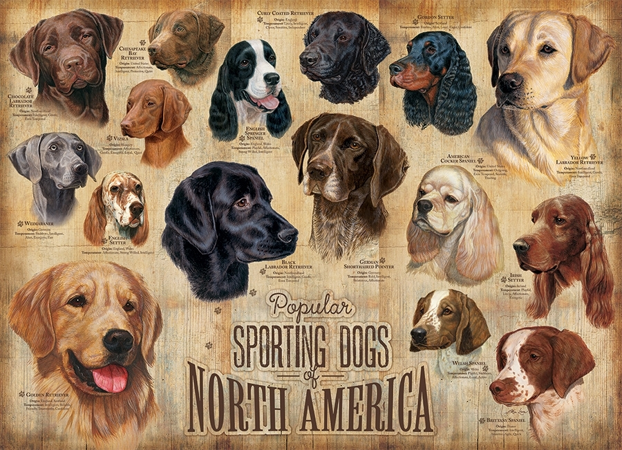 sporting-dogs