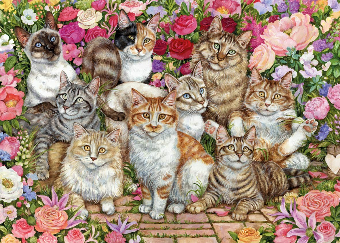 floral-cats