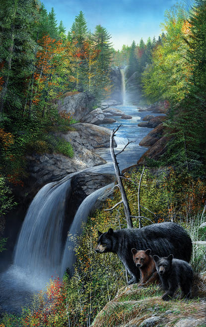 kevin-daniel-bears-at-the-waterfall
